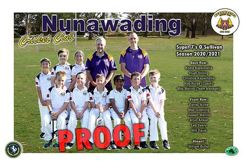 Nunawading Cricket Team Photo