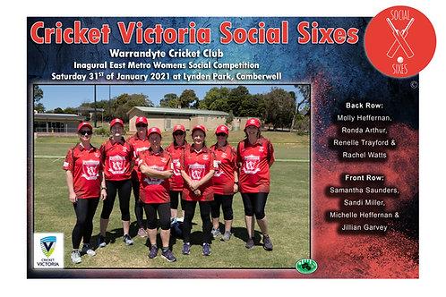 Social Sixes Cricket Team Photo