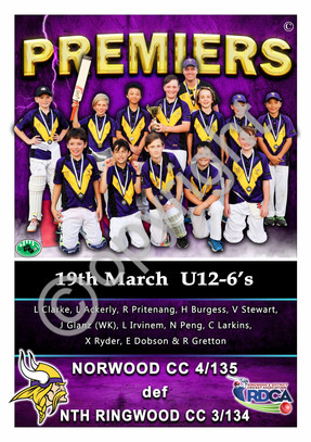 RDCA NORWOOD U12 6'S PREMIERSHIP A2 Post