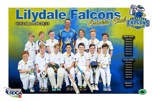 Lilydale Falcons Cricket Team Photo