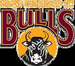 Nth Ringwood Bulls cricket logo.png