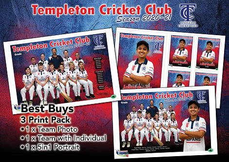 Templeton Cricket Best Buy – All 3 Photos