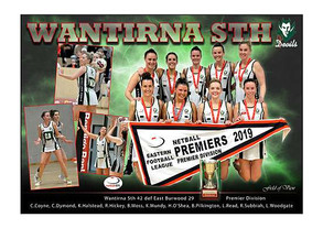 Wantirna Sth Netball Premier Division in