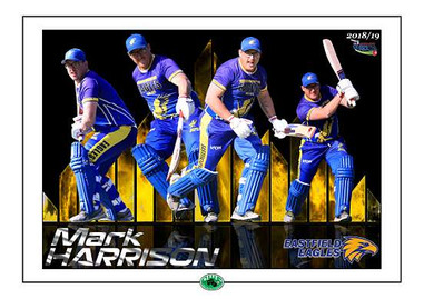 Mark Harrison poster 3 A3 in border-015.