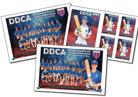 DDCA Cricket Best Buy – All 3 Photos