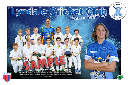 Lyndale Cricket Team Photo With Individual Player Portrait