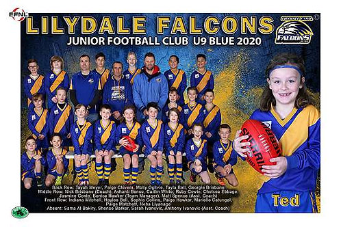 Lilydale Falcons Football Club Team Photo With Individual Player Portrait