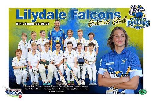 Lilydale Falcons Cricket Team Photo With Individual Player Portrait
