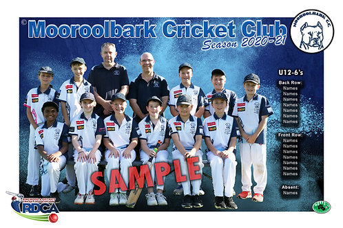 Mooroolbark Cricket Team Photo