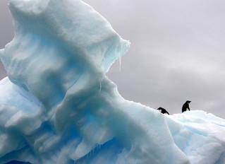 Norsif formidler: Hva er klimarisikoen for norske bedrifter?