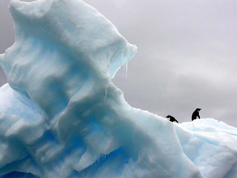 Danger Ice