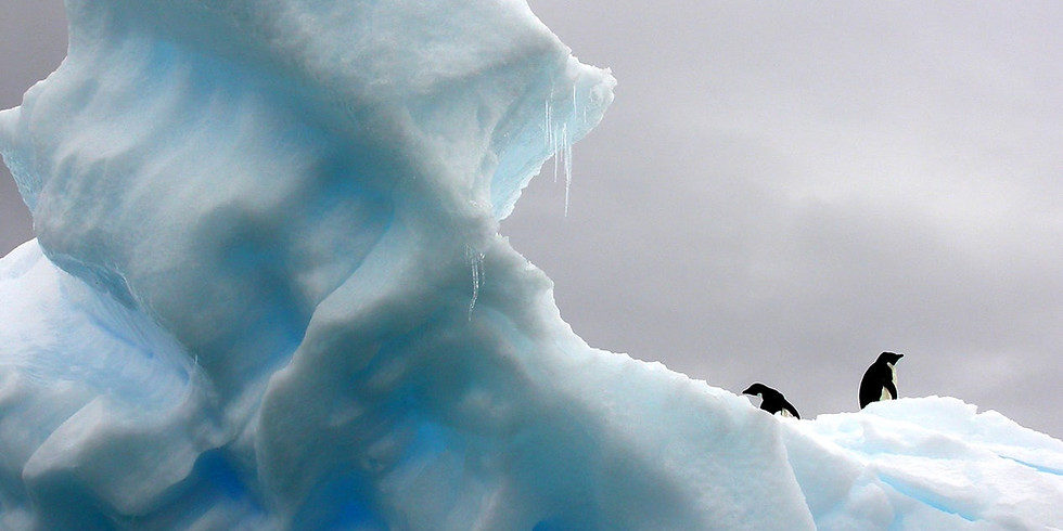 Breaking the Ice with Interest-Based Negotiation