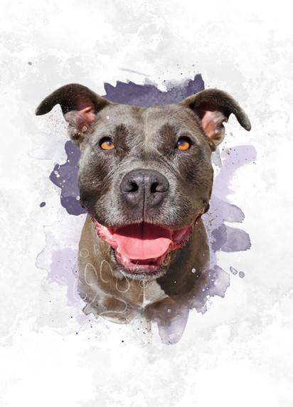 Kari Ladret I Custom Pet Portrait I Pyper.jpg