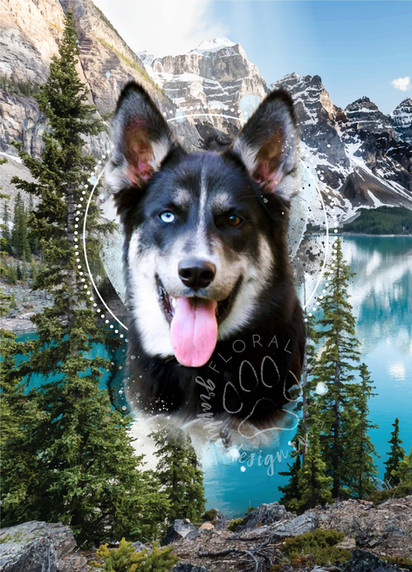 Ashley Buell I Custom Pet Portrait I #2 copy.jpg