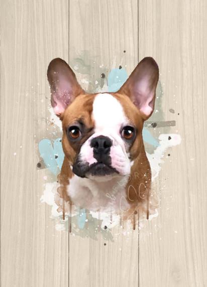Kendra Andrew I Custom Pet Portrait I Bodie.jpg