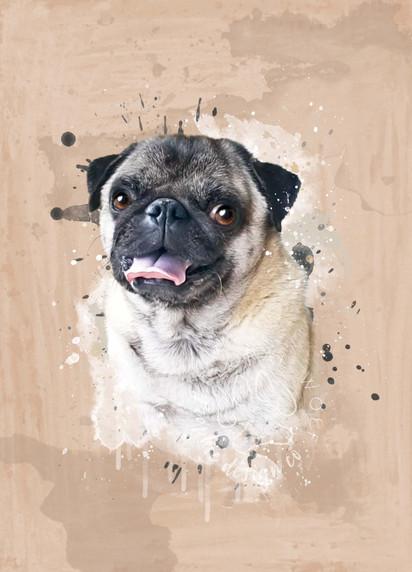 Andra Secara I Custom Pet Portrait I Pablo.jpg