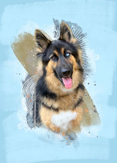 Lindsey Gilchrist I Custom Pet Portrait I Hank.jpg