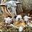 Thumbnail: Lambing Live