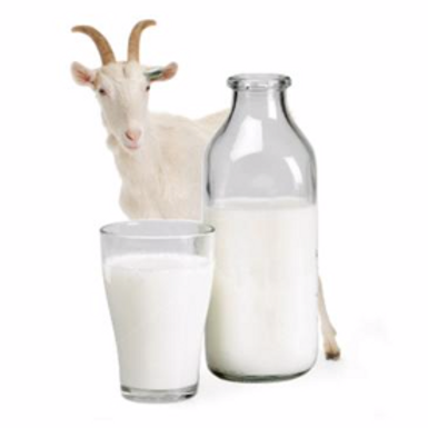 Piper Hall Goats Milk (1 pint)