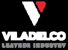 logotipo-viladelco-fundo transparente-02