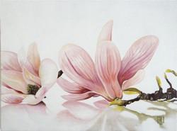 Les Magnolias - 2013