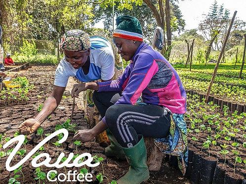 Happy 2021! 2 Bags of Vava Coffee