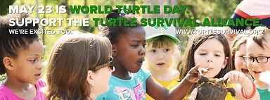 World Turtle Day Social Media Header