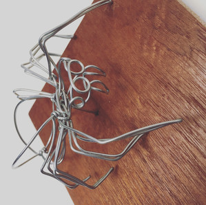 wire taxidermy jumping spider