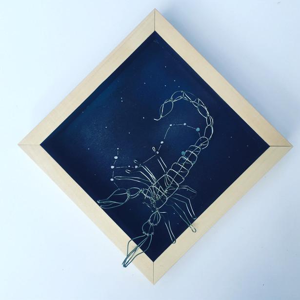wire taxidermy scorpio
