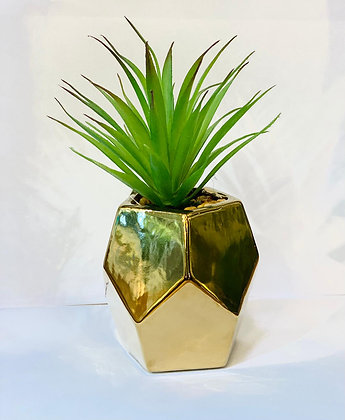 עציץ מלאכותי קטן עציץ זהב גאומטרי קקסוט מלאכותי צמחים אונליין
