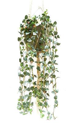 צמח נשפך עלים נשפכים עציץ נופל מלאכותי ירוק נשפך