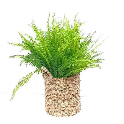 ענף שרך מלאכותי במראה טבעי צמחים מלאכותיים לרכישה אונליין