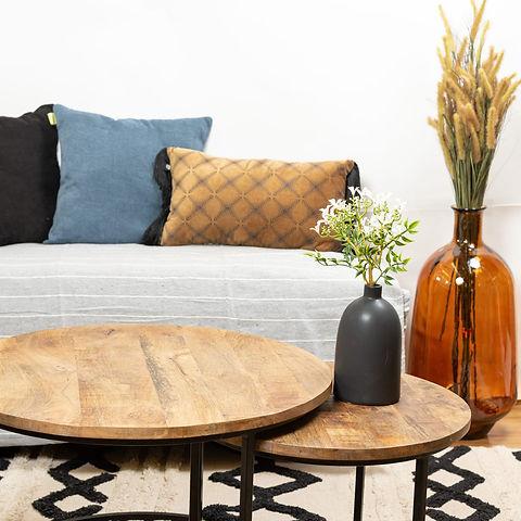סלון- ספה, כריות, שולחן עם אגטלים ופרחים