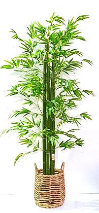"""עציץ במבוק מלאכותי לרכישה אונליין עציץ במבוק 160 ס""""מ עציץ במבוק ירוק"""