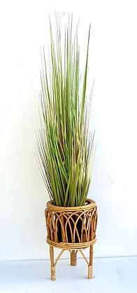 כלי לעציץ מבמבוק פלנטר במבוק לרכישה אונליין