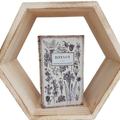 ספר קופסא בוטני 2