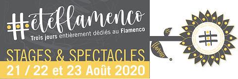 2019_Bannière_site_#eteflamenco.jpg