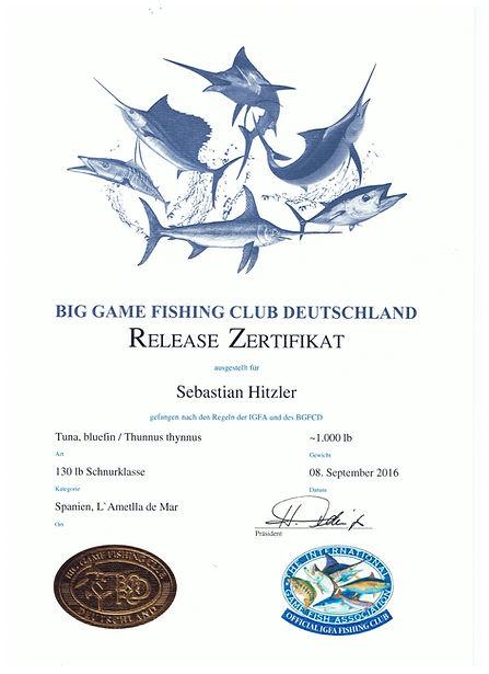 Sebastian Hitzler BFT 1000.jpg