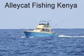 alleycat_fishing_rips_2016-a9987afa_edit