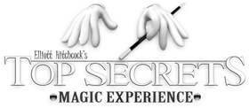 Top Secrets logo bw no background.png