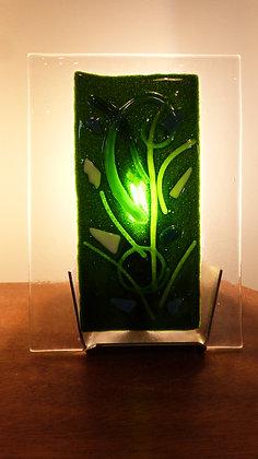 LAMPFUS017