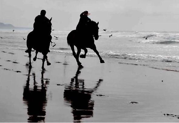 Charlotte galloping down beach