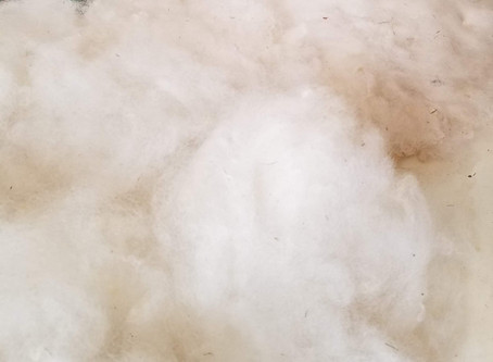 Anyone can wash  their wool at home, here's how!