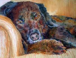 Portrait of Bilboa for Web