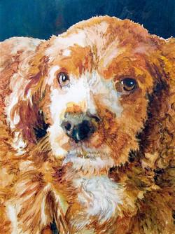 Portrait of Archie2