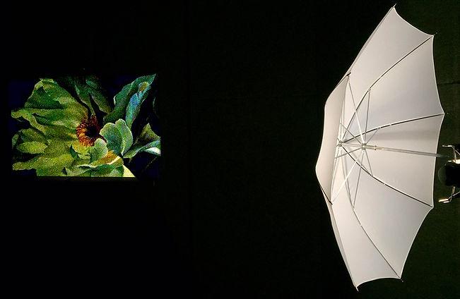 IMG_1634 Umbrella Light.jpg