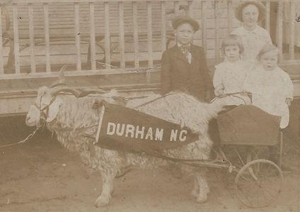 Goat Cart Original.jpg