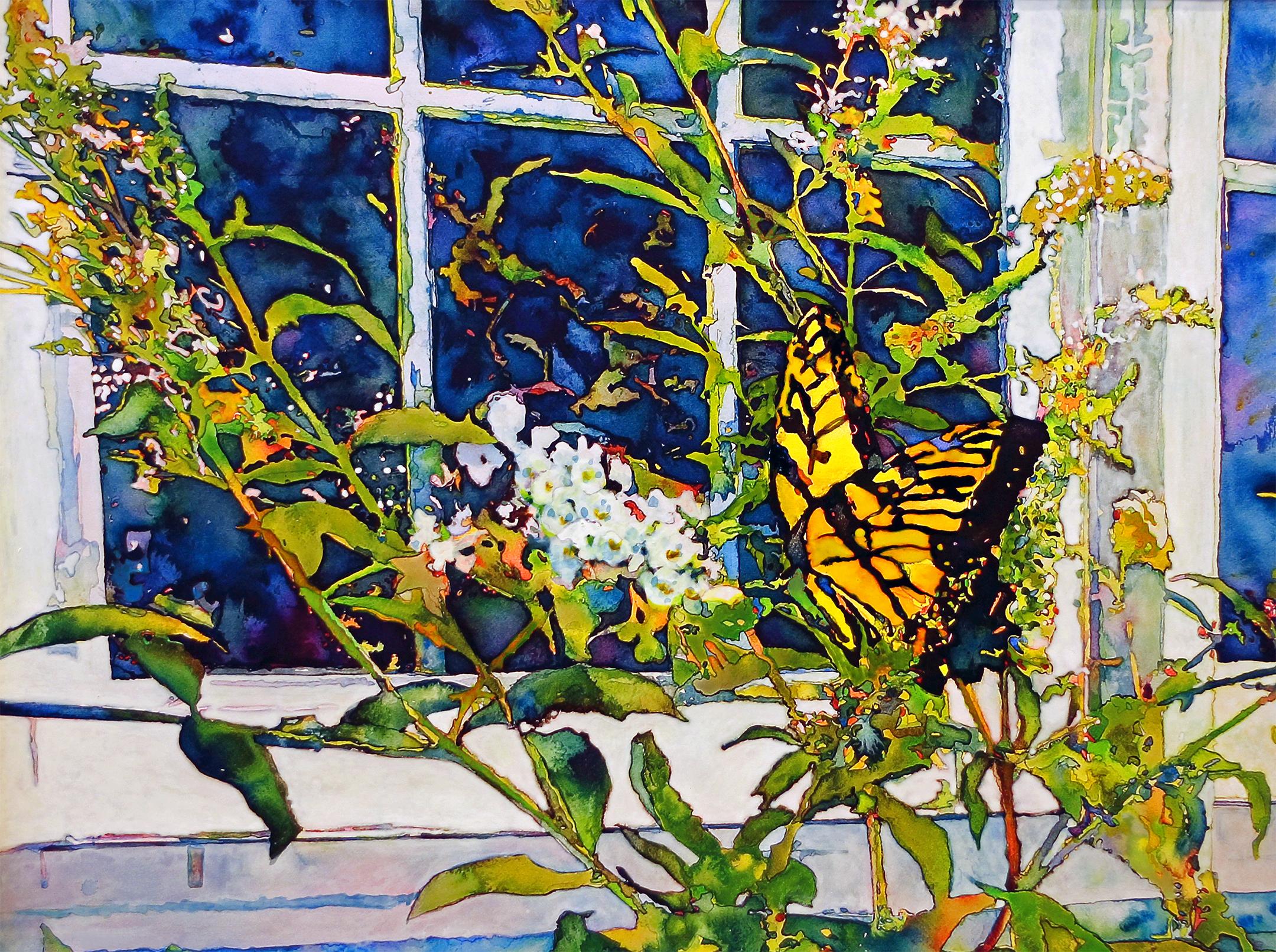 Butterfly 11X14