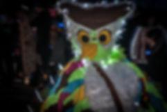 lumiere-carnaval-photo-couleur-deco-evenements-tirage-photographie-photographe-deguisement-fete-char-enfants-famille-animal-nocturne-hibou