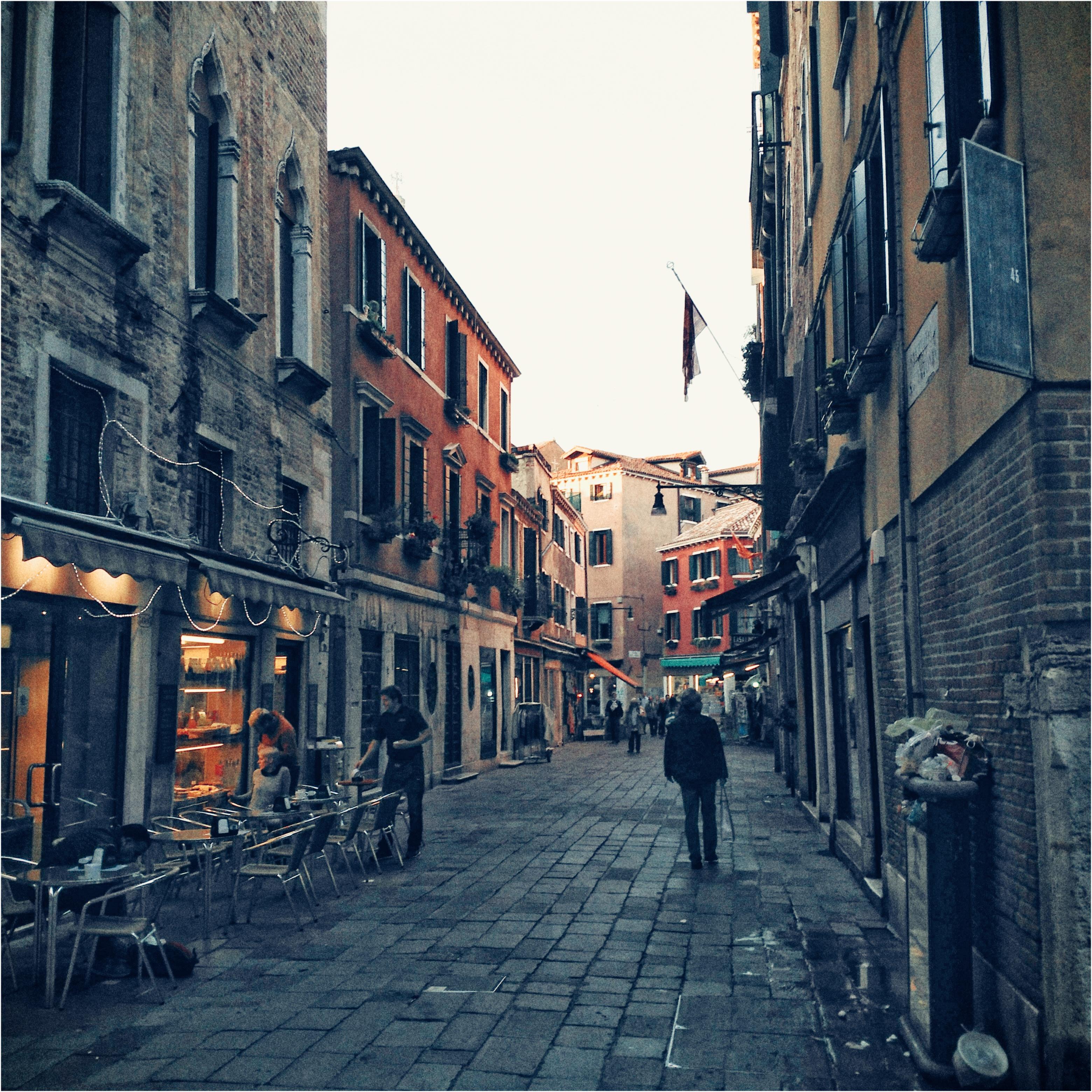 Venise Insalubre